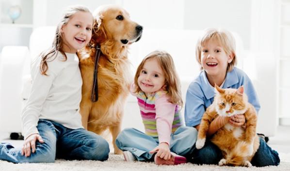 4 benefii pentru sănătate oferite de animalele de companie